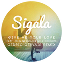 Give Me Your Love (Cedric Gervais Remix Radio Edit) feat.John Newman,Nile Rodgers/Sigala