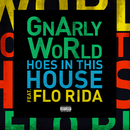 Hoes in This House feat.Flo Rida/GnArly WoRld