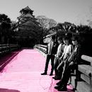 渦と渦~西の渦~Live at 大阪城ホール/NICO Touches the Walls