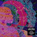 The Dreaming Room (Japan Version)/Laura Mvula
