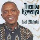 Izwi Elikhulu/Themba Ngwenya