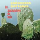 Cañonazos Norteños/Los Madrugadores del Bajío