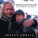 Amando Demais ((Studio Version) [Bonus Track]) feat.Jim Tomlinson/Marcos Valle & Stacey Kent