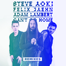 Can't Go Home (Remixes) feat.Adam Lambert/Steve Aoki