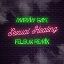 Sexual Healing (Felguk Remix)/Marvin Gaye