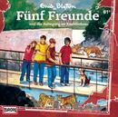 061/und die Aufregung im Raubtierhaus/Fünf Freunde