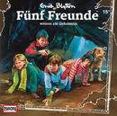 015/wittern ein Geheimnis/Fünf Freunde