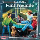 013/jagen die Entführer/Fünf Freunde