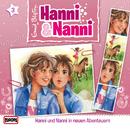 03/in neuen Abenteuern/Hanni und Nanni