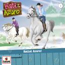 01/Rettet Azuro!/Kati & Azuro