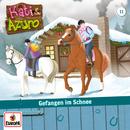 11/Gefangen im Schnee/Kati & Azuro