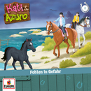 08/Fohlen in Gefahr/Kati & Azuro
