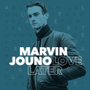 Love Later (Robbie Remix)/Marvin Jouno