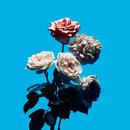 Flower (TV size)/Lenny code fiction