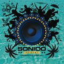 Carromato Punk (Cumbia Remix)/Sonido Vegetal
