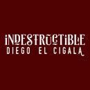 Indestructible/Diego El Cigala