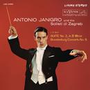 Bach: Suite for Orchestra No. 2 in B Minor, BWV 1067 & Brandenburg Concerto No. 5 in D Major, BWV 1050/Antonio Janigro