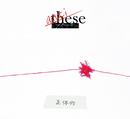 anti-these(~正体作~)/ミオヤマザキ