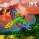 Fire for Fire feat.Kojey Radical/Poté