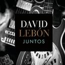 Juntos/David Lebón