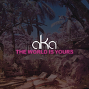 The World Is Yours/AKA