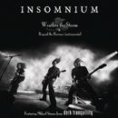Weather the Storm/Insomnium