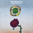 Distant Summers/Tim Bowness