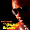 David Calzado y Su Charanga Habanera (Remasterizado)/David Calzado y Su Charanga Habanera