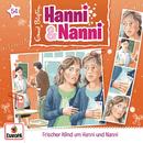 054/Frischer Wind um Hanni und Nanni/Hanni und Nanni