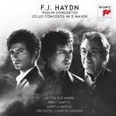 Franz Joseph Haydn: Violin and Cello Concertos/Pablo Martos y Alberto Martos