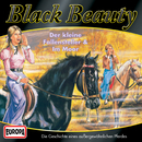 04/Black Beauty im Moor/Black Beauty
