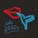 Eu Vou Beijar Essa Flor feat.Bateria da Beija-Flor/João Brasil