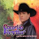 Con los Pies en la Tierra/Cornelio Reyna Jr.