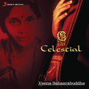 Celestial/Veena Sahasrabuddhe