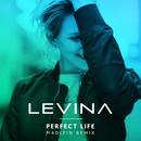 Perfect Life (Madizin Mix)/Levina