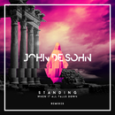 Standing When It All Falls Down (Remixes) feat.Roshi/John De Sohn