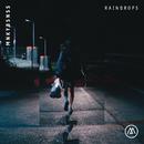 Raindrops feat.Monica Birkenes/MNKYBSNSS