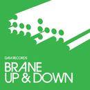 Up & Down (Remixes)/Brane