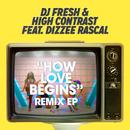 How Love Begins (Remixes) feat.Dizzee Rascal/DJ Fresh