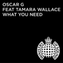 What You Need (Denney Remix) feat.Tamara Wallace/Oscar G