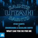 What Can You Do for Me (Extended Mix)/Utah Saints vs. Drumsound & Bassline Smith