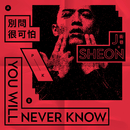 You'll Never Know / Don't Ask/J.Sheon