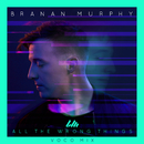 All the Wrong Things (Voco Mix) feat.Koryn Hawthorne/Branan Murphy