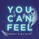 You Can Feel/Assadii & Du Saint
