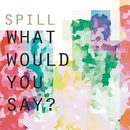 What Would You Say/Spill