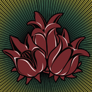 Três Lindas Flores/Luis Carlinhos