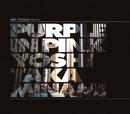 PURPLE IN PINK/南 佳孝