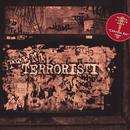 Terroristi/Steen1
