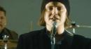 Hirsipuu (Video)/Happoradio