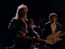 How Long Can A Man Be Strong/The Jeff Healey Band